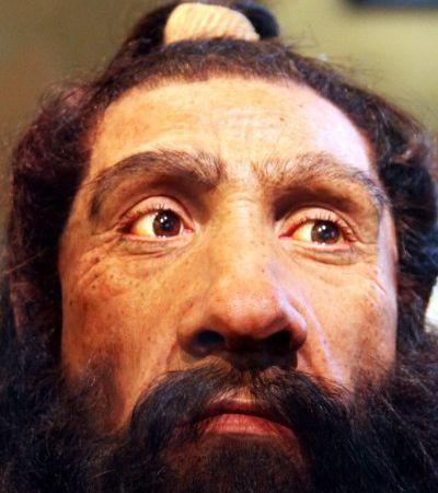 Nossos antepassados se relacionaram com neandertais – e há um pouco deles em cada um de nós