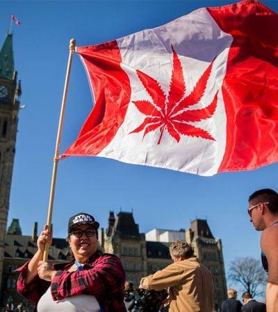 Após aprovar legalização recreativa, Canadá defende cultivo doméstico de maconha