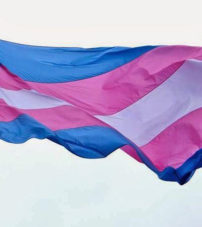 Metade dos brasileiros não sabe o que significa transgênero, aponta pesquisa