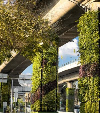 Para melhorar o ar, Cidade do México transforma pilares de viadutos em jardins verticais