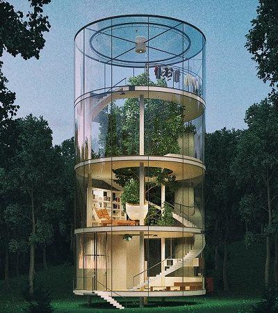 Arquitetos usam tecnologia para criar casa ao redor de árvore de forma integrada e sustentável