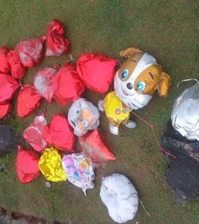 Balões de propaganda utilizados em SP estão poluindo o litoral norte