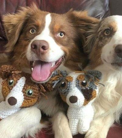 Artista transforma pets em miniaturas de crochê deles mesmos que são pura fofura