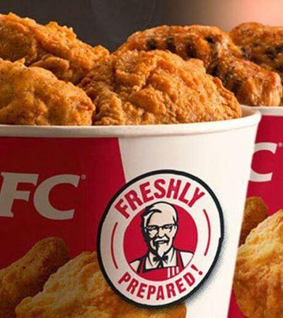 KFC anuncia testes para desenvolver 'frango vegetariano' que será servido em baldes