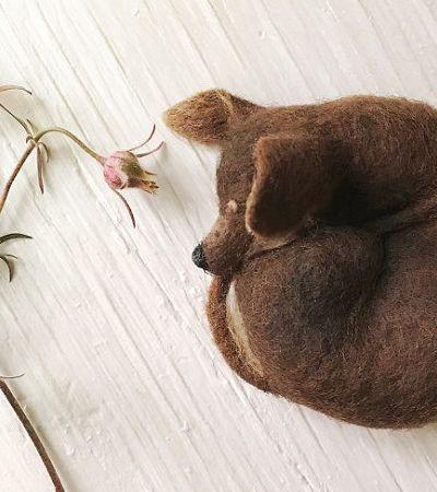 Usando lã, artista cria filhotes tão realistas que vão te deixar confuso