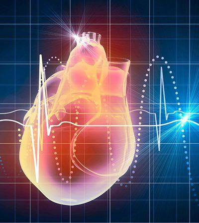 Pesquisadores desenvolvem algoritmo capaz de diagnosticar problemas cardíacos