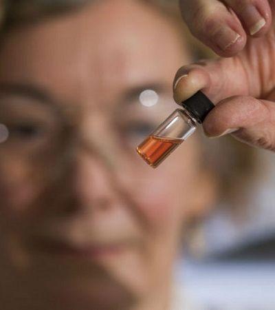 Cientistas descobrem a cor mais antiga do mundo com 1,1 bilhão de anos