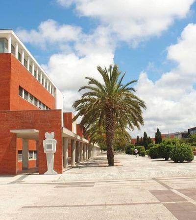 Universidade portuguesa oferece bolsas de mestrado para brasileiros