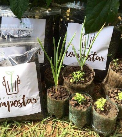 Projeto oferece coleta de lixo orgânico por assinatura e devolve adubo ou hortaliças