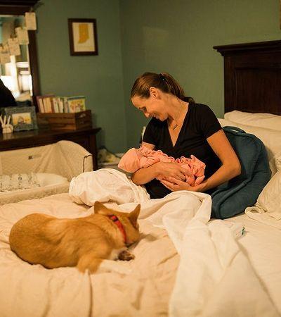 Este doguinho acompanhando sua dona durante todo o trabalho de parto é a coisa mais querida