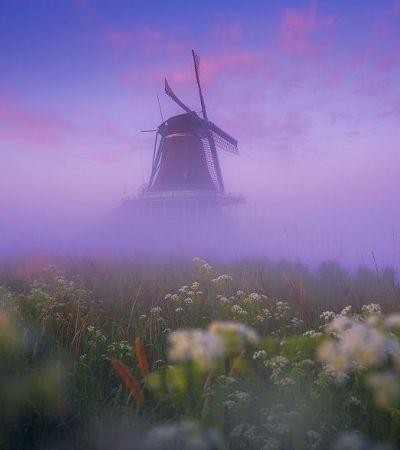 Fotógrafo retrata a atmosfera mágica dos moinhos holandeses sob a neblina