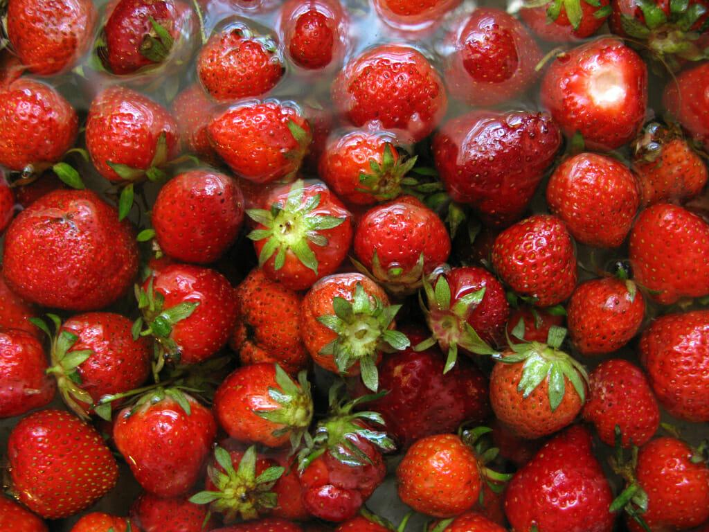 Tomate, morango, mamão papaia, goiaba, figo, uva, pera, pêssego, melão são algumas das frutas consideradas com alto nível de agrotóxicos