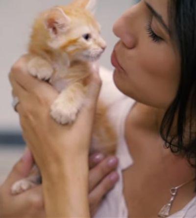 Veja a reação das pessoas ao saberem que vão adotar animais resgatados