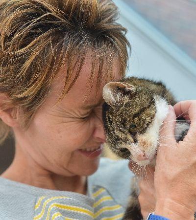 O emocionante reencontro de gato com sua humana após 13 anos de separação