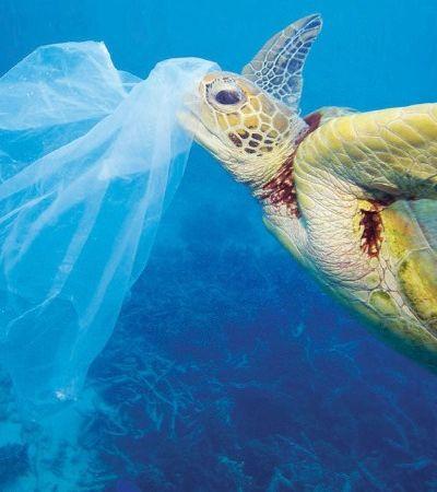 Nova Zelândia vai proibir sacos plásticos até 2019