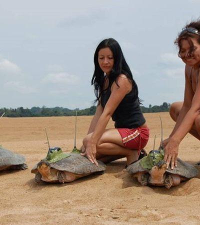 Pesquisador de tartarugas tem prêmio cassado por foto com mulheres de biquíni