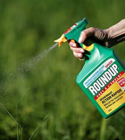 Monsanto é condenada a pagar 290 milhões a jardineiro com câncer em virada de mesa histórica