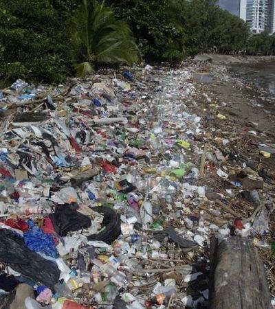 Esta empresa quer transformar lixo marinho em biocombustível