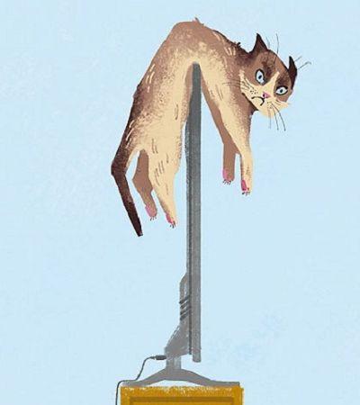 Antes e depois: Gatos exemplificam como a tecnologia mudou nossas vidas