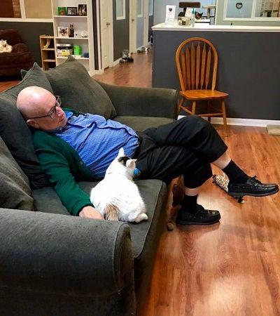 Este senhor é voluntário e tira sonecas com os gatos deste abrigo diariamente