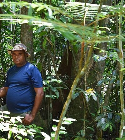 Guardião da mata há 30 anos resgata sementes nativas