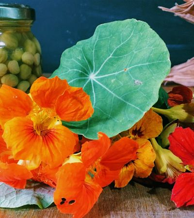 Fazenda Coruputuba ajuda a levar PANC nativas do Brasil para sua mesa