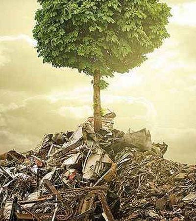 O e-commerce que encontrou na venda de lixo uma fonte sustentável de lucro