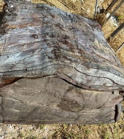 Caixas misteriosas voltam a aparecer no litoral do Ceará e intrigam moradores