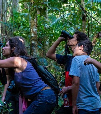 Parque promove passeio para observação de aves em São Paulo
