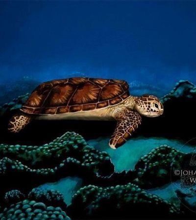 Artista usa body painting para se disfarçar de tartaruga marinha; consegue enxergar?