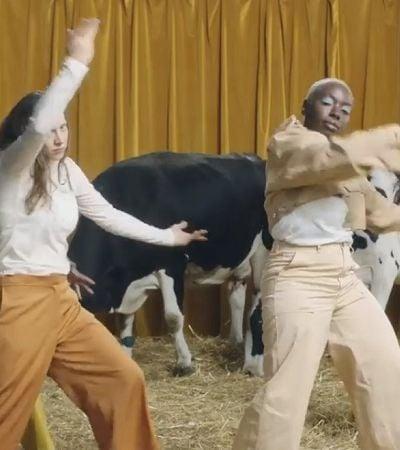 Campanha de bomba de amamentação compara mulheres a vacas e divide opiniões