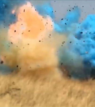 Chá de revelação de sexo de bebê termina em incêndio florestal de uma semana