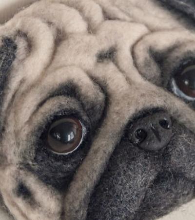 Artista cria animais de estimação de lã que de tão perfeitos parecem reais