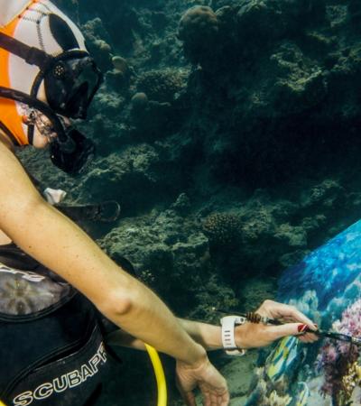 A artista-mergulhadora que cria pinturas incríveis debaixo d'água