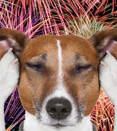Fogos de artifício são proibidos em Goiânia com aprovação de lei