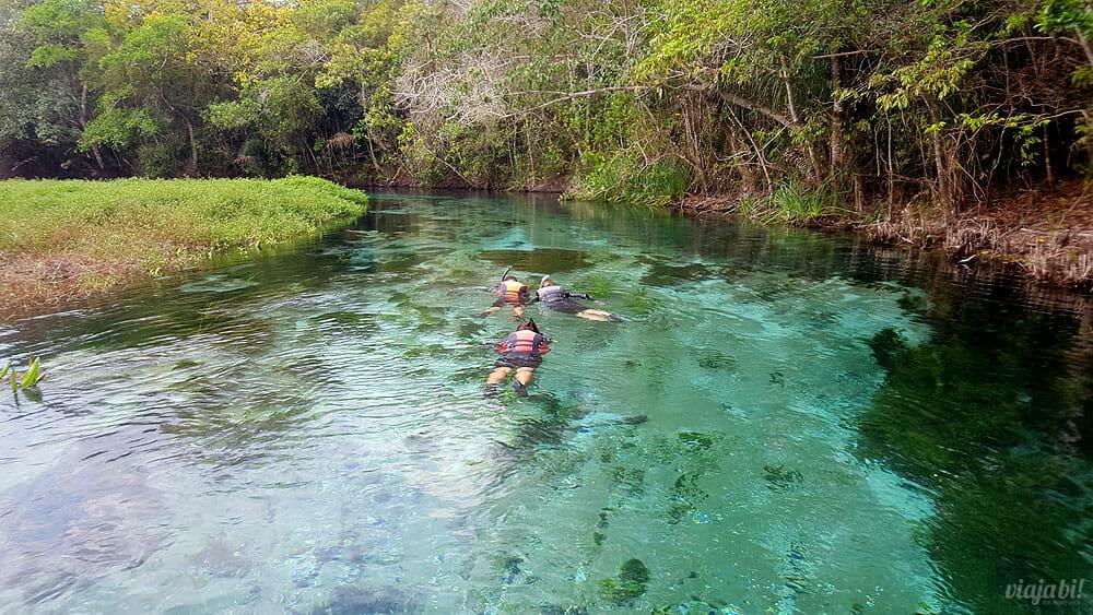 Bonito é um destino conhecido por suas flutuações, como essa no Rio Sucuri - Foto: Rafael Leick / Viaja Bi!