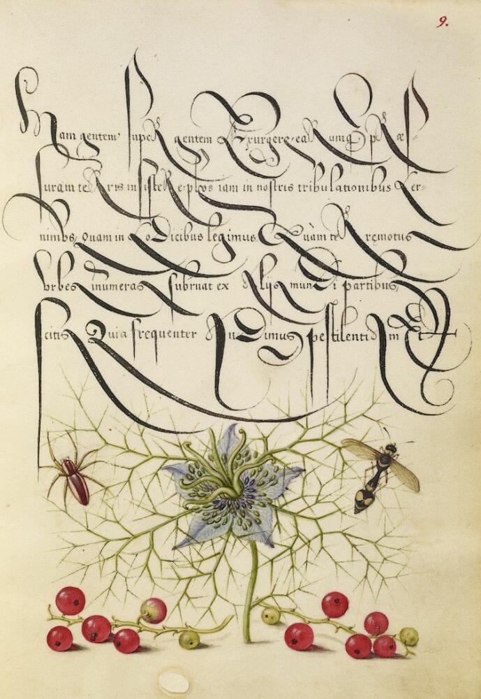 manual caligrafia 1