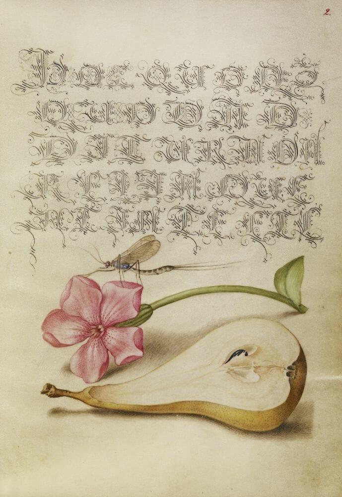 manual caligrafia 3
