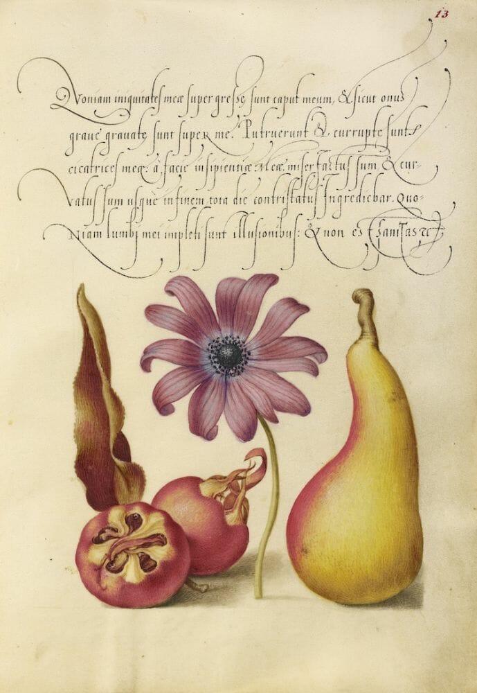 manual caligrafia 6