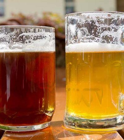 Tipo de cerveja que você prefere diz muito sobre você, diz pesquisa