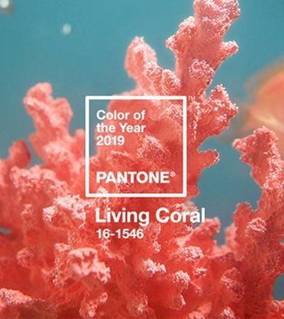 Pantone de 2019 é 'coral vivo', para dar conforto a ambientes em constante transformação