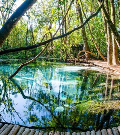 5 piscinas naturais coladinhas em SP para aproveitar o calor