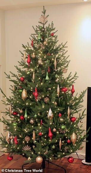 árvore de natal 2a