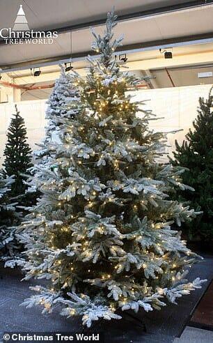 árvore natal 3a