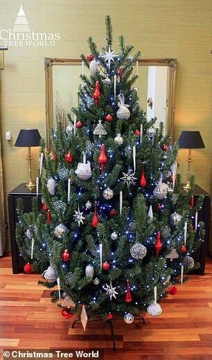 árvore natal 4a