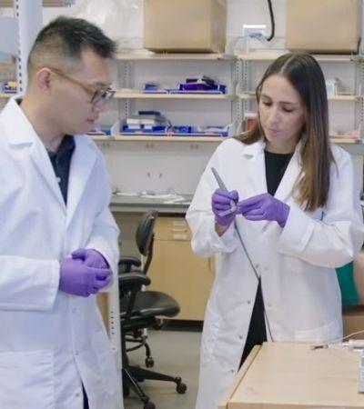 Cientista brasileira de 32 anos que pesquisa sobre câncer ganha 'bolsa para gênios'