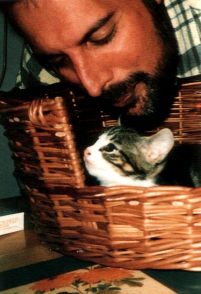freddie mercury gatos 17