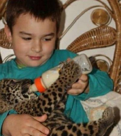 A incrível história do menino brasileiro que cresceu brincando com onças