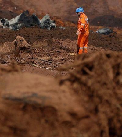 Funcionários que aprovaram barragem em Brumadinho são presos; políticos e executivos não