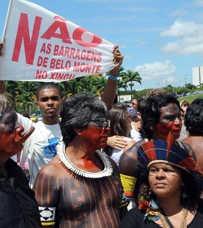 Após governo enfraquecer Funai, terra indígena é invadida por madeireiros no Pará